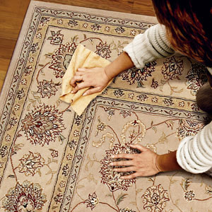 Pet-Stains-from-Carpets-and-Antique-Rugs